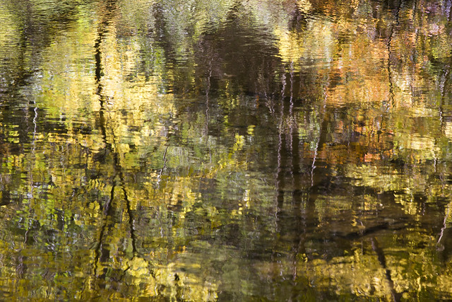 IMG_6599 Gorge Abstract - Reflections in Creek