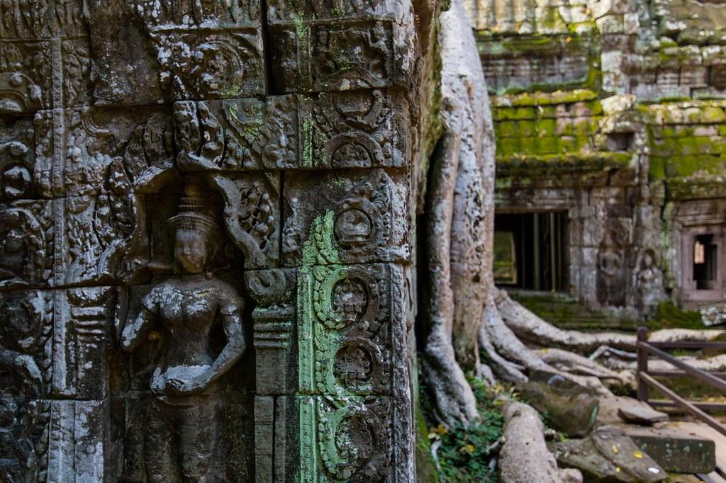 Ta Prohm Angkor-2763