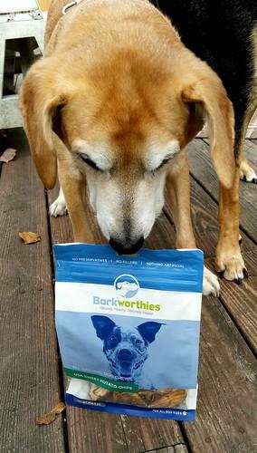 Barkworthies Sweet Potato Dog Treats Lapdog Creations