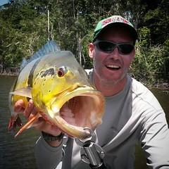Alexandre (Mega). Tucunare açú em pescaria no  rio negro no barco hotel Demeni Sport Fishing.  www.demeni.com.br  #pescaamadora #pesqueesolte #baitcast #fly #tucunare #tucunareazul #flyfishing #fishinglures #bass #bassfishing #pescador #angler #fishing #a