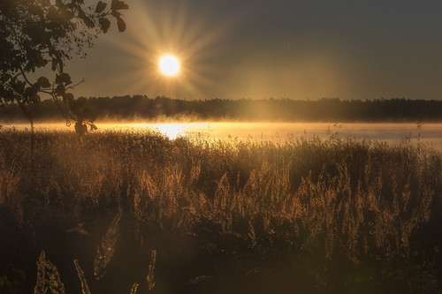 sunrise fog mist sea sunray rays misty foggy landscape autumn seascape beach milamai southernfinland horizontal outdoors maisema finnish suomi flare shine shining