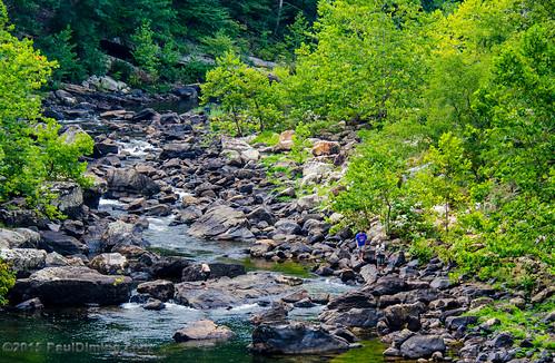 summer river virginia us unitedstates valley dailyphoto maury goshen mauryriver sr39 rockbridgecounty rockbridgecountyvirginia d7000 stateroute39 goshenvirginia pauldiming