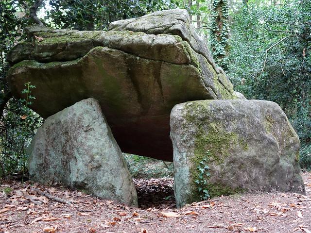 Le dolmen de Ménez-Liaven près de Pluguffan - Finistère - Juillet 2015 - 03