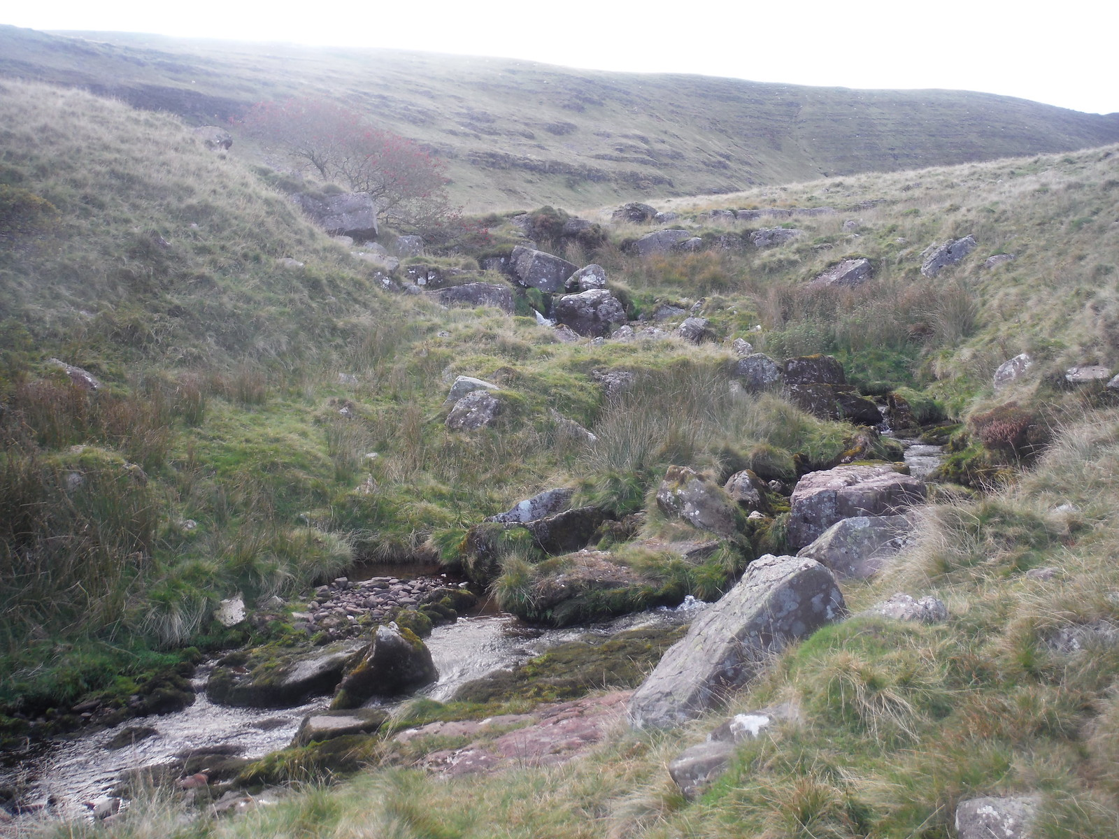 Nant Tawe Fechan (stream) SWC Walk 279 The Black Mountain - Y Mynydd Du (Glyntawe Circular)