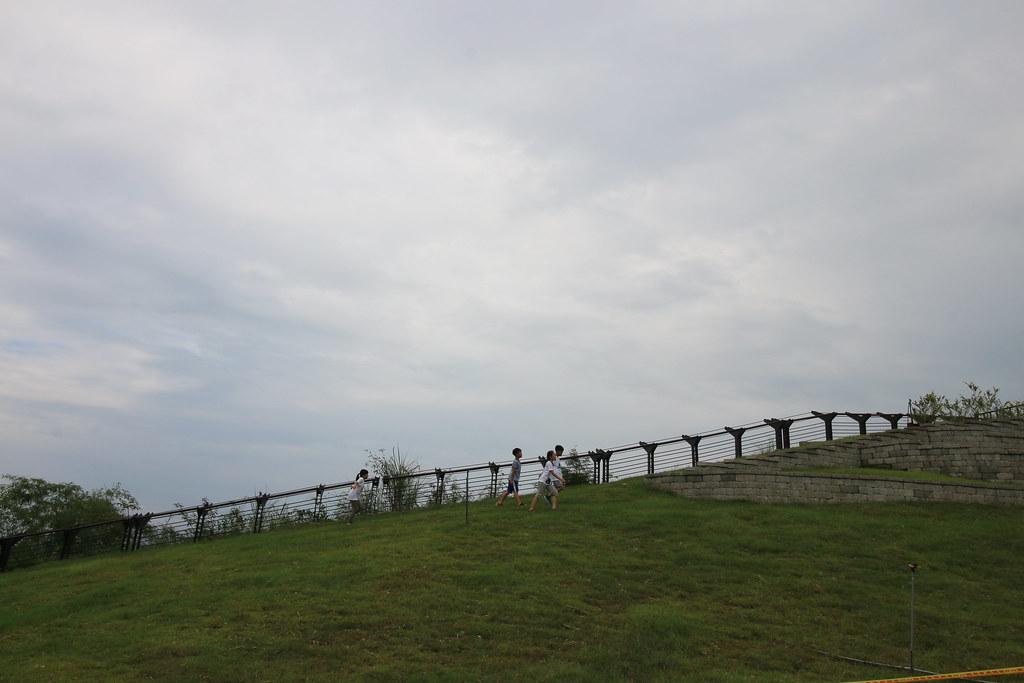 台南市南162鄉道 (6)