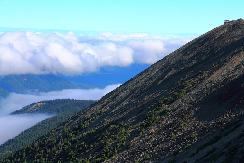 IMG_8401 Mount Fremont Lookout Trail, Mount Rainier National Park