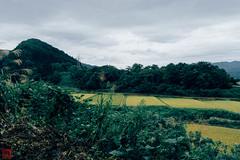 Photo:IMG_1611-13 By zunsanzunsan