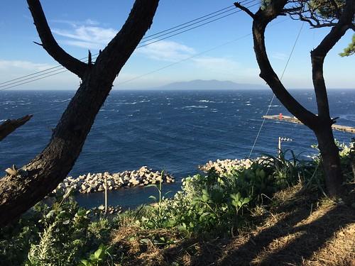 利島からの眺め 大島