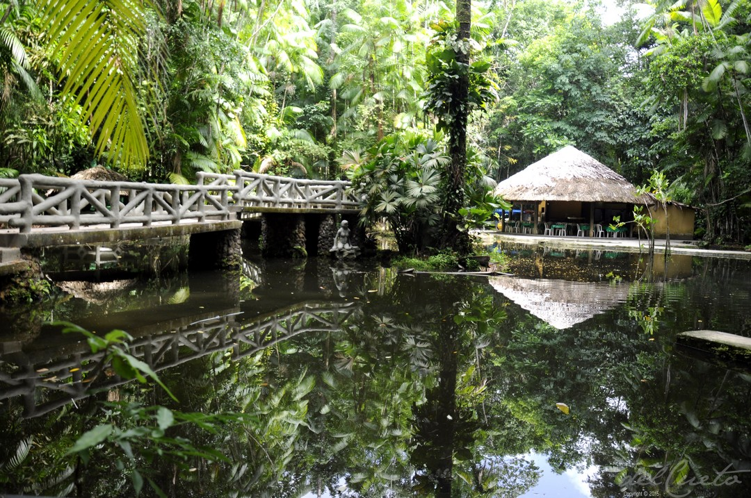 Bosque Rodrigues Alves, Belém do Pará