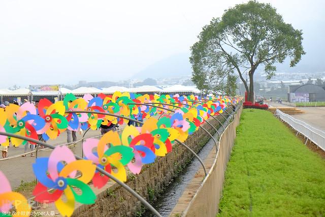 2015台中新社花海12