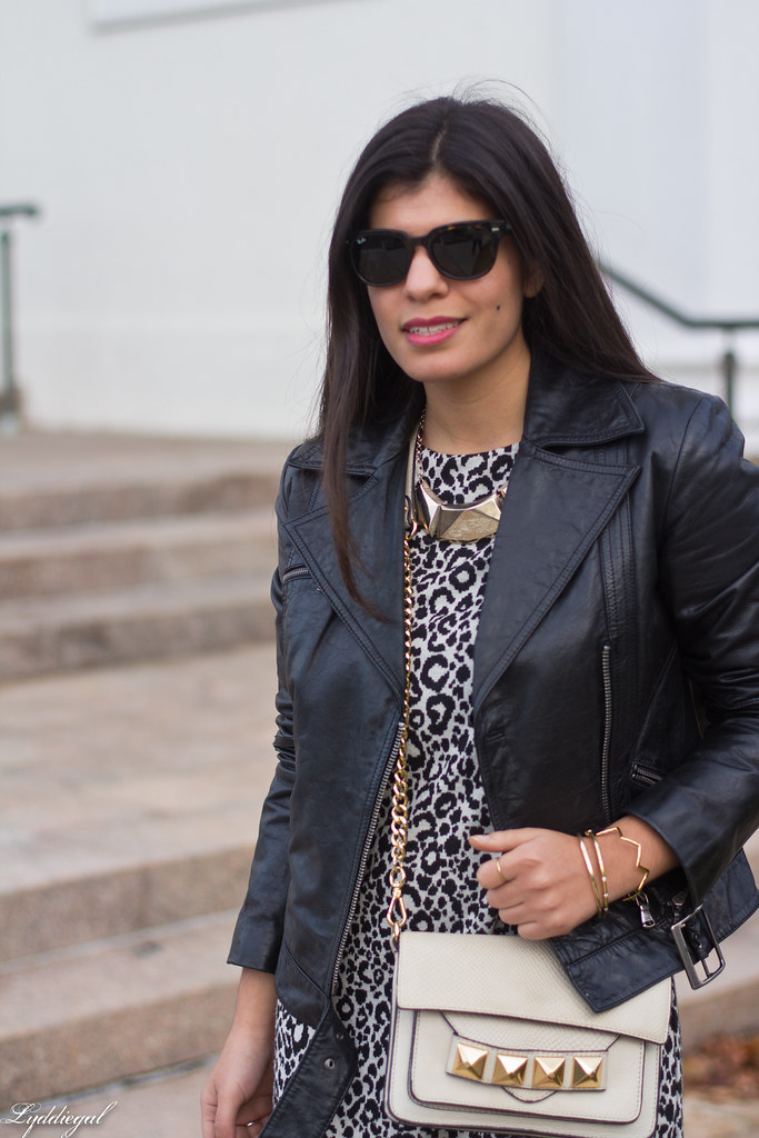 leopard dress, leather moto jacket, studded bag-5.jpg