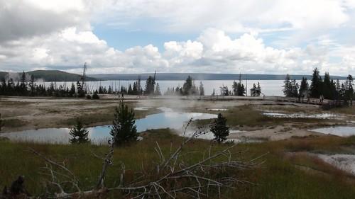 Yellowstone  (9/07/2015)
