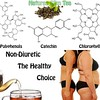 Oolong Weight Loss Tea that is non diuretic by Natures SlimTea