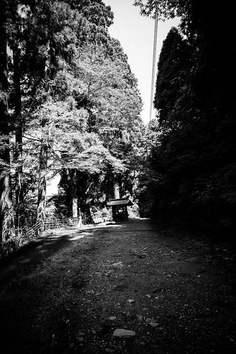 IMG_2867_LR__Kyoto_2015_09_04