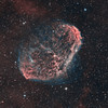 NGC6888 (The crescent nebula) by Daniele Malleo