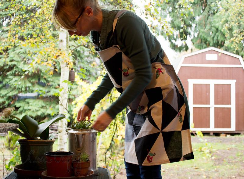 apron2 (1 of 1)
