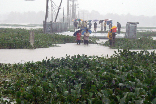 Flood Relief 2011