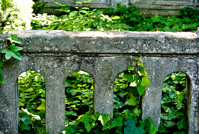Friedhof_Britz I_2015-6