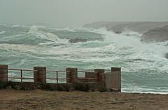 Pluie et grand vent au Vivier ..