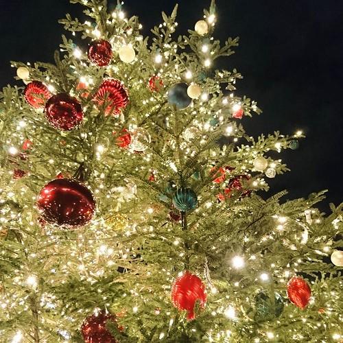 さらに、クリスマス的な。