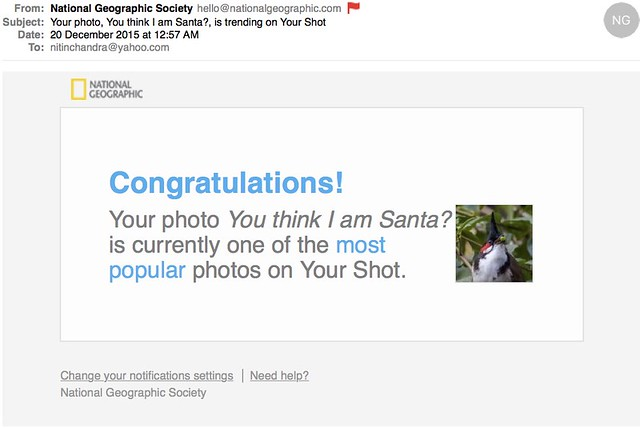 Your photo You think I am Santa is trending on Your Shot