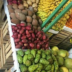 @Regrann_App from @mariacoronaproduce  -  Maria Corona Produce! #yellowgreenfarmersmarket #bananas #pricklypear #mamey #fruits #jicama #floridaoranges #tangerines #dragonfruit #local#farmers #farmersmarket #papayatropical #frutasfrescas #fresco #fresh #fr