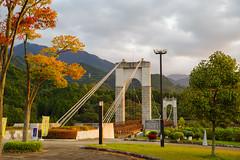 風の吊り橋@戸川公園