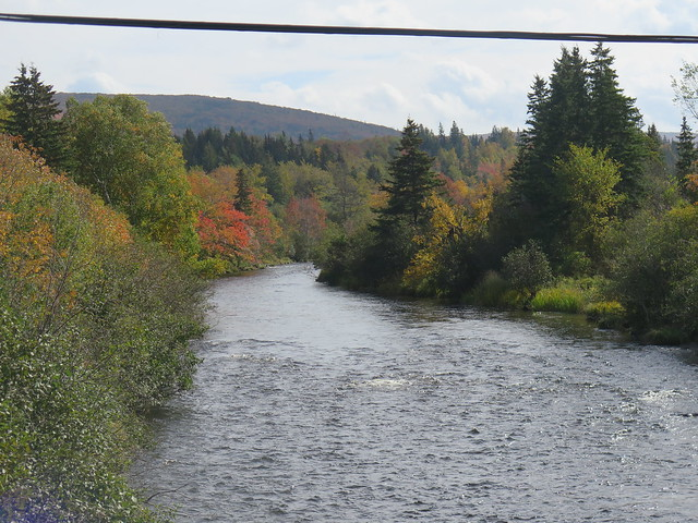 the South West Margaree River