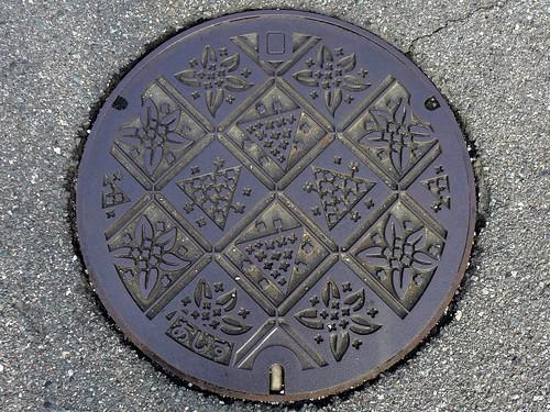 flower japan 日本 yamaguchi manhole 花 マンホール 山口県 ajisu 阿知須町