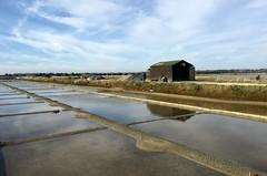 Marais Salant ~ Salt Marsh