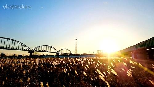 morning sun sunshine japan sunrise bluesky aomori hachinohe morningsun すすき 青森 朝 朝日 八戸