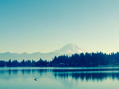 Mt Ranier from Lake Tapps
