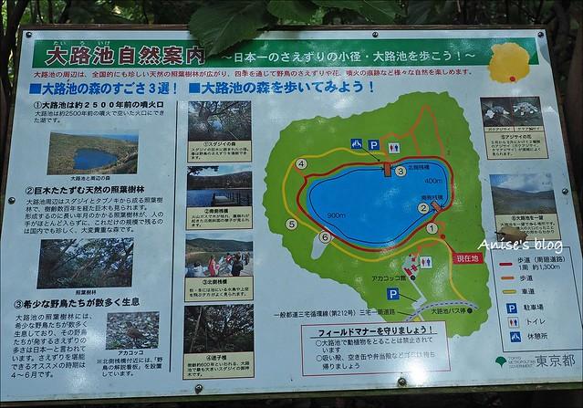 三宅島_045
