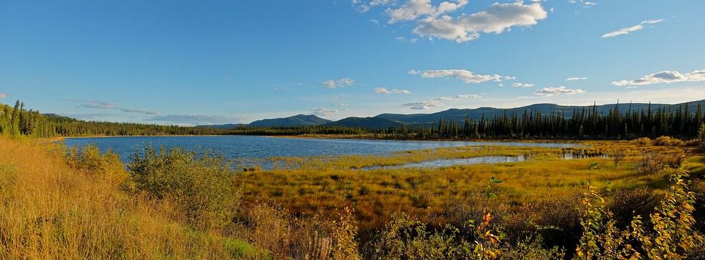 Nordenskiold River Marshlands Panorama