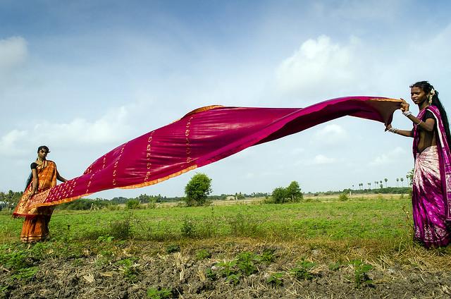 Drying the Saree