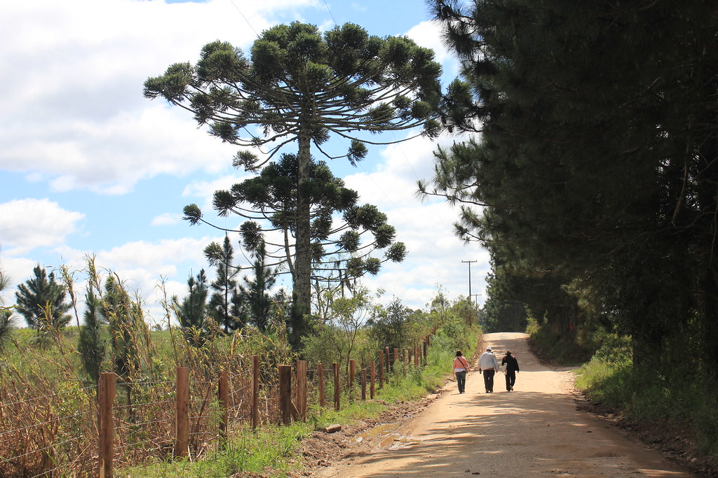 Assentamento Contestado - Lapa PR CAMINHADA NA NATUREZA