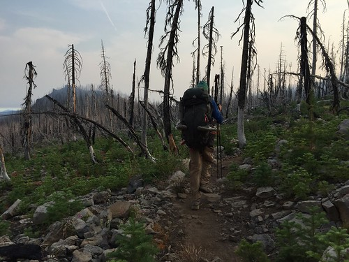 PCT: Day 125