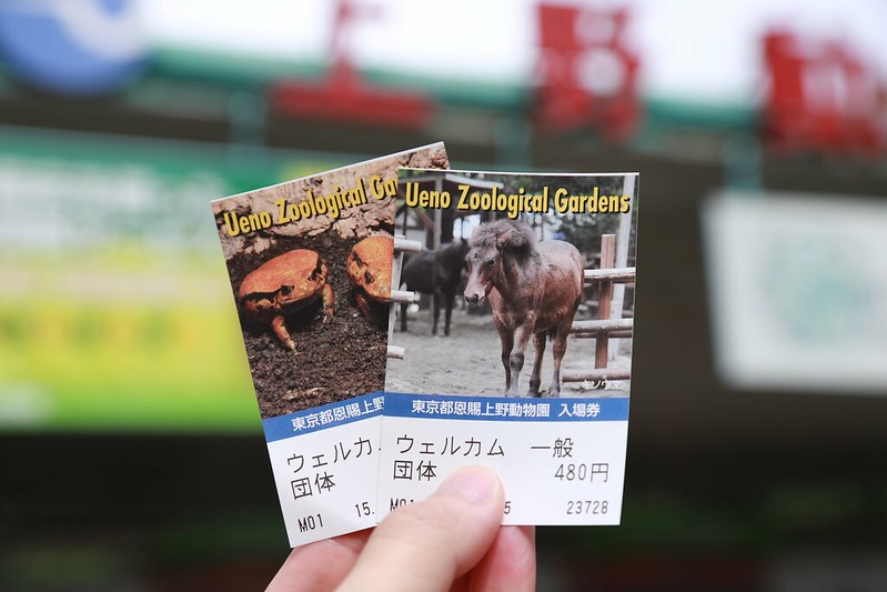 動物園的門票