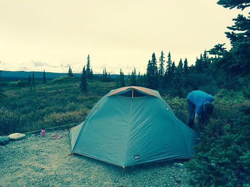Camping in Denali NP