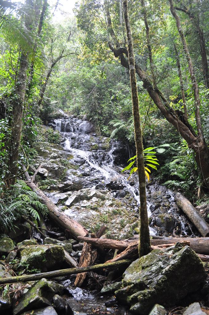 Bobbin Bobbin Falls, Mount Bartle Frere