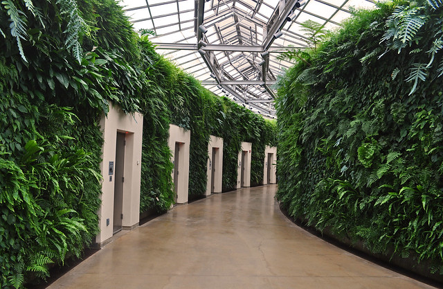 Conservatory - Livining Wall -Restroom Pods