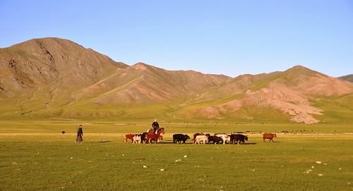 166 Viaje al oeste de Mongolia (93)