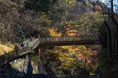大垂水峠の歩道橋