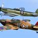 Hawker Hurricane and Supermarine Seafire F Mk XVII by Mrs Airwolfhound
