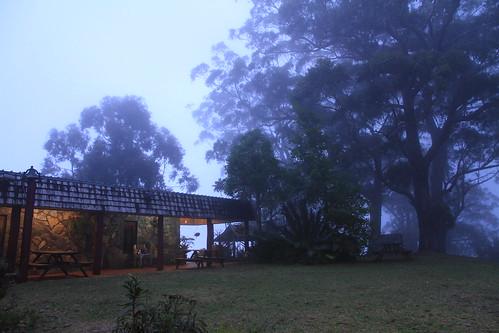 澳洲昆士蘭-Binna Burra Sky Lodges雲霧景觀-20141120-賴鵬智攝