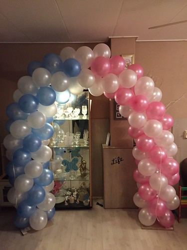 Ballonboog 5m Communie Roze/Wit Blauw/Wit
