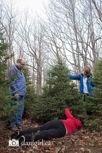 Christmas traditions-2