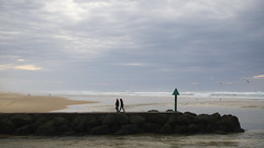 Marcher à contre-courant