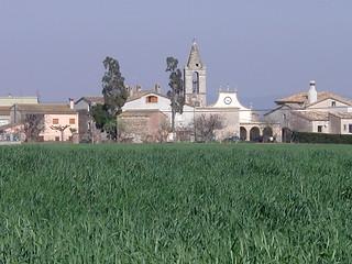 Església de santa Maria de Salitja