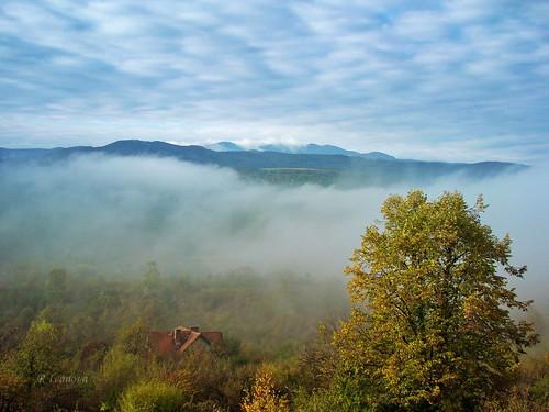nature landscape mist fall autumn fog tree mountain mountainside hill sky cloud clouds color colors house sony bulgaria rivanova риванова българия старапланина мъгла природа пейзаж есен дърво